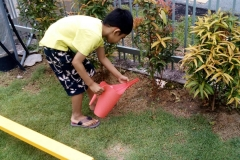 Outdoor Activity-Gardening